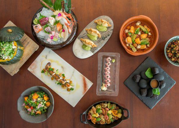 Introducing LEYNIA: Dynamic Argentinian Cuisine